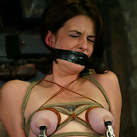 Lynn Dumaire recieves nipple torture and forced orgasms.