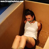 Vixen bound and ballgagged for transport