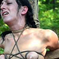 Elise Graves decided that for her trip to the farm with PD she wanted to get the total BDSM experien