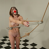 Newbie gets tied, shocked, flogged, gagged, and spanked.