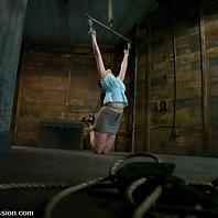 Rough sex and suspension bondage.