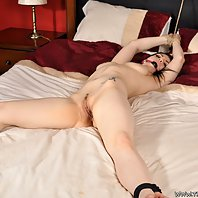 Porn starlet Lucia Love tied up naked in bed.
