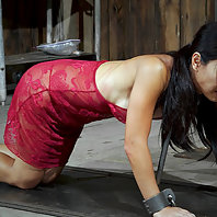 Tia Ling loves bondage almost as much as she does service. She wants to please but with all of these