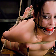 Young brunette gets tied up, zapped, and forced to cum