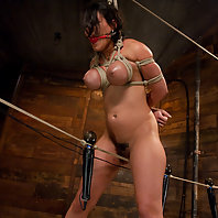 Big titted Charley Chase is rope-bound, fucked and squirting all over.