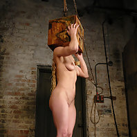 Sexy shaved blond suffers tight bondage, abuse and orgasms.