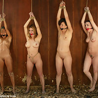 4 girls are tied and tortured with electricity in the woods