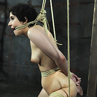 Master A has an excellent idea for a piece of modern art. It involves Marina, tied up in wicked posi