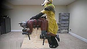 Furryfuck 53